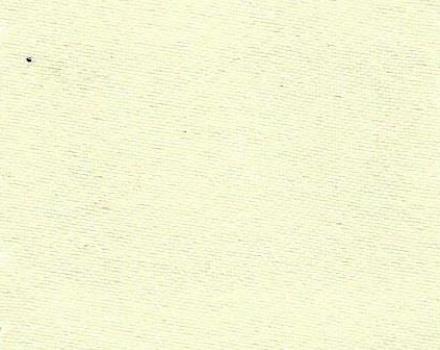 8405 Ivory