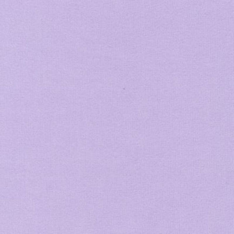 Flannel Solids F019 - 1191 Lilac